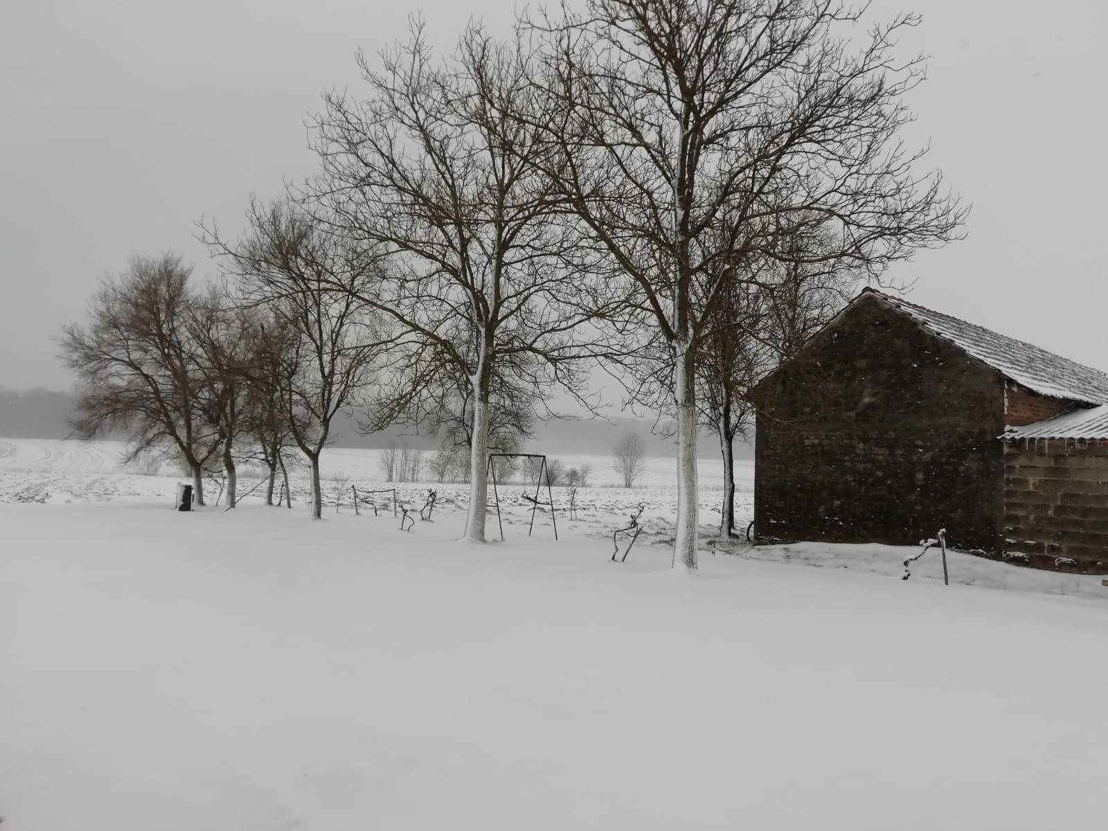 BIJELO IZNENAĐENJE Snijeg je i prije znao pasti kad mu se nitko nije nadao