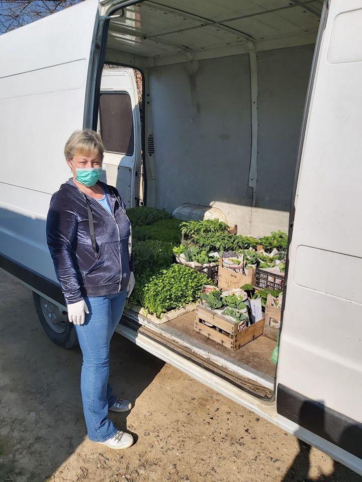 SEZONA RADOVA U VRTU Bilogorci požurili sa sadnjom rajčice i paprike