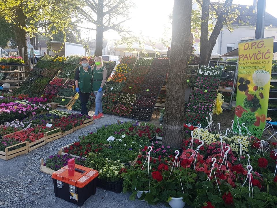 NAJGORA SEZONA IKAD Prodaja cvijeća stala, dio potpuno propao