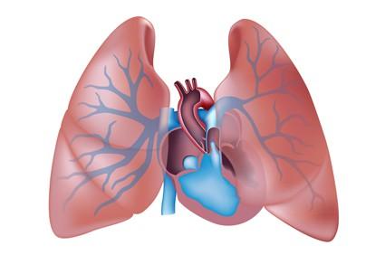 SVJETSKI DAN PLUĆNE HIPERTENZIJE Plave usne za osvještavanje rijetke bolesti