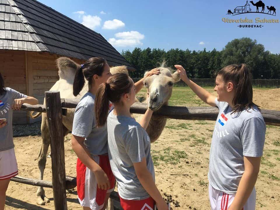 HRVATSKA SAHARA Vesela životinjska ekipa ponovno vas čeka!