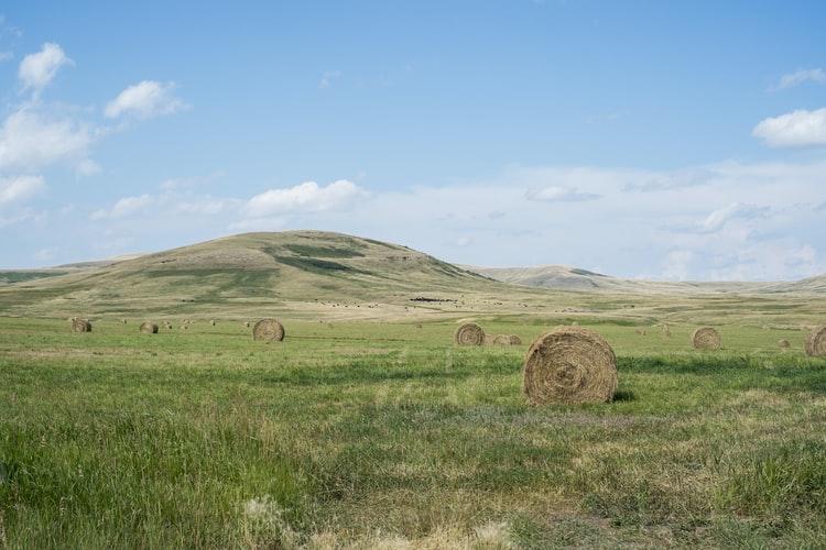 PRODAJA NEKRETNINA Poljoprivredno gospodarstvo ostalo bez kupca