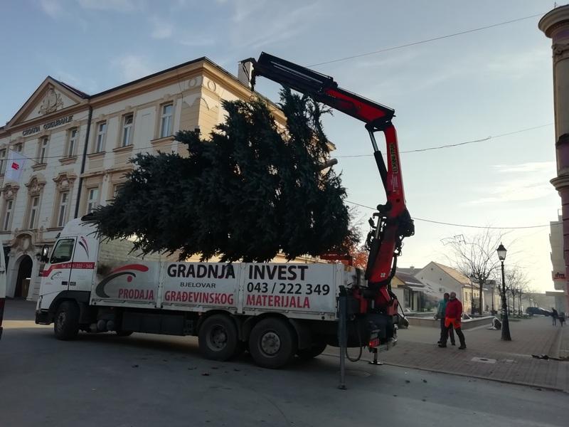 BLAGDANI PRED VRATIMA U središte grada stiglo ogromno drvce