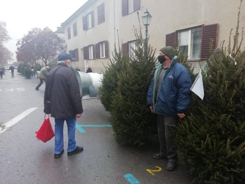 ČAROBNA ULICA Prodavači božićnih drvaca kažu kako se Bjelovarčani nikad nisu toliko cjenkali!