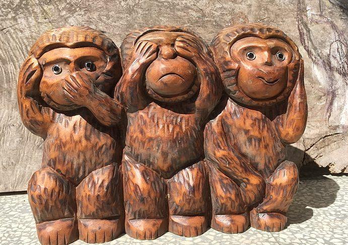 Majmunska posla koja su medijima simpatična