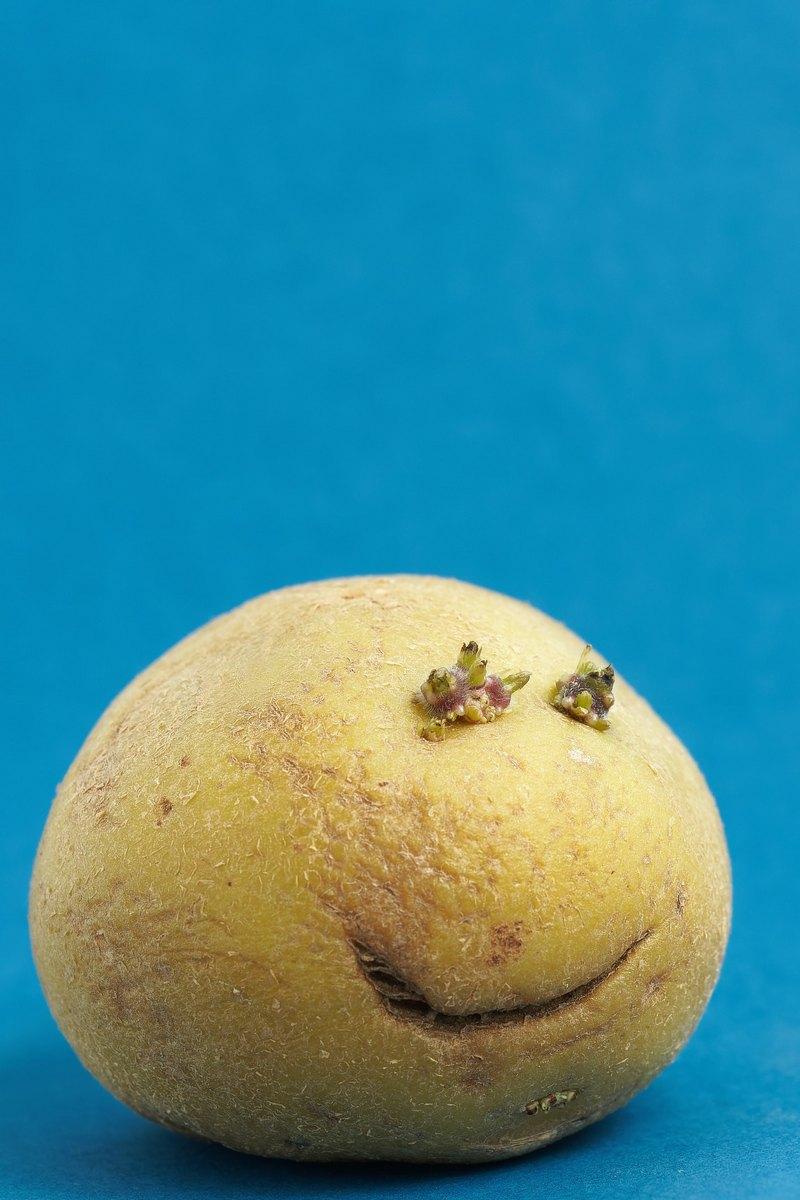 U Hercegovcu uživajte u specijalitetima od krumpira te neobičnim sportskim igrama
