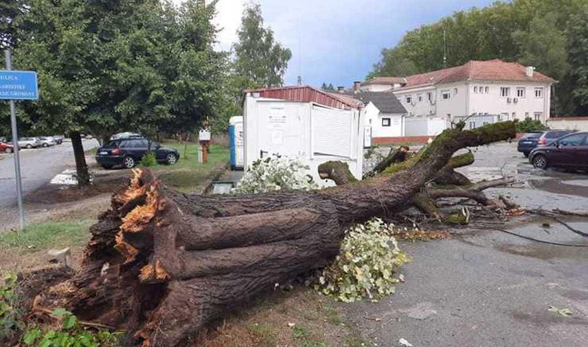 Padala stabla, nastradala krovišta, štetu pretrpio i prvi županijski vatrogasac