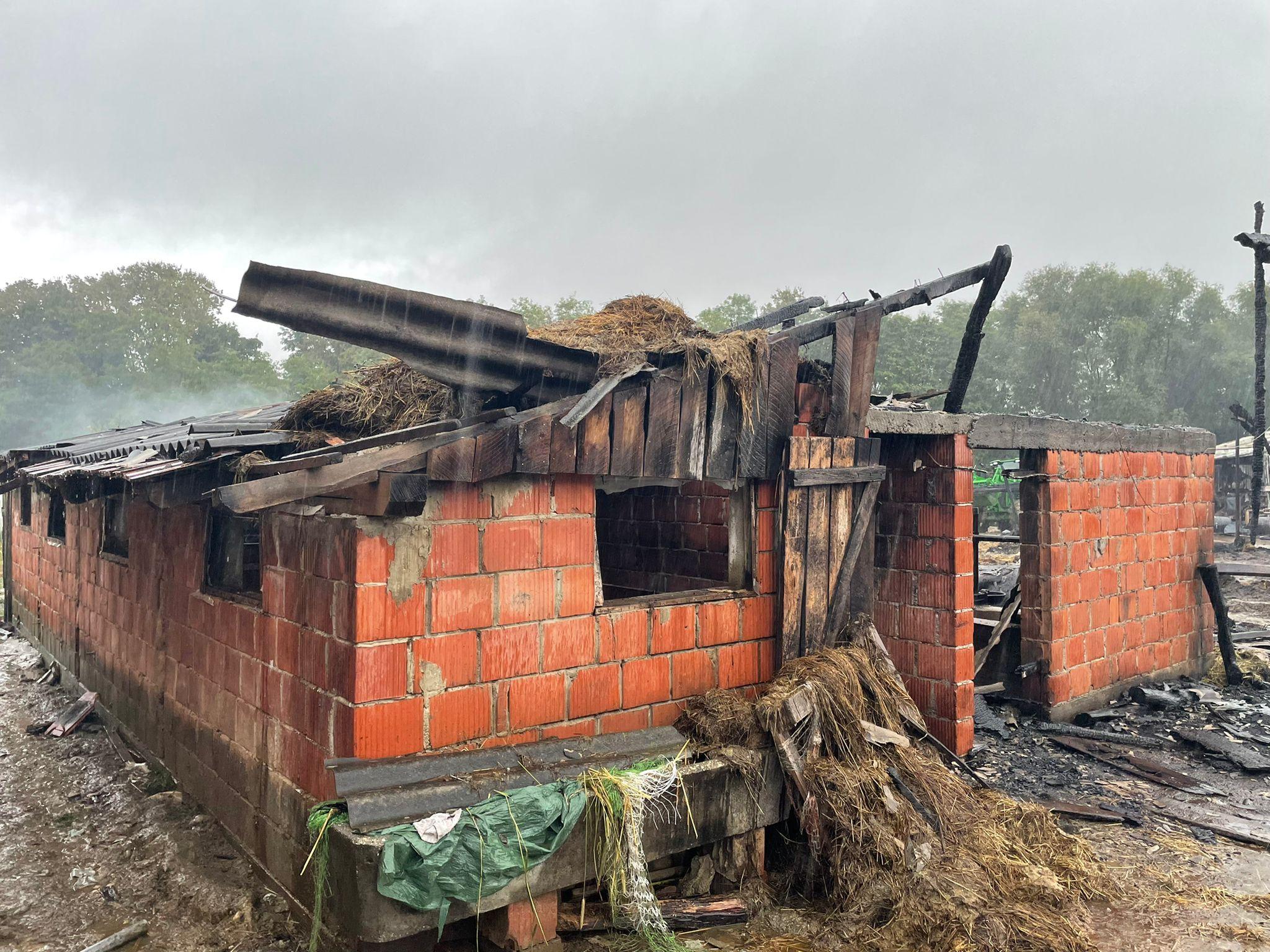 [FOTO I VIDEO] Ostali bez imovine vrijedne stotine tisuća kuna, no suze im kreću na spomen životinja u mukama