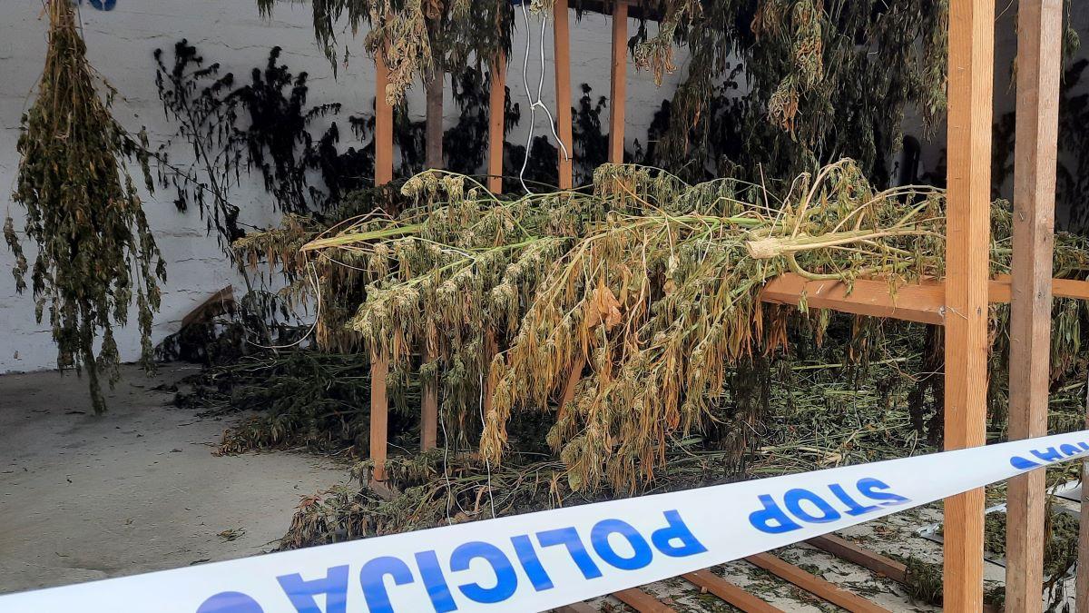 Pali glavni bjelovarski dileri s milijunima vrijednom 'robom'